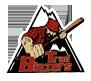 Adirondack Trail Blazers